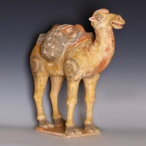 tang dynasty camel goods 1