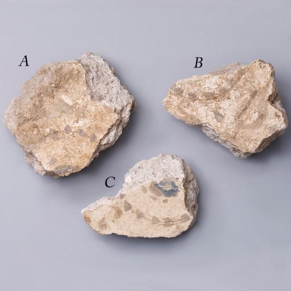 Selection of Pompeian Fresco Fragments