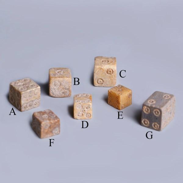 Selection of Roman Bone Dice