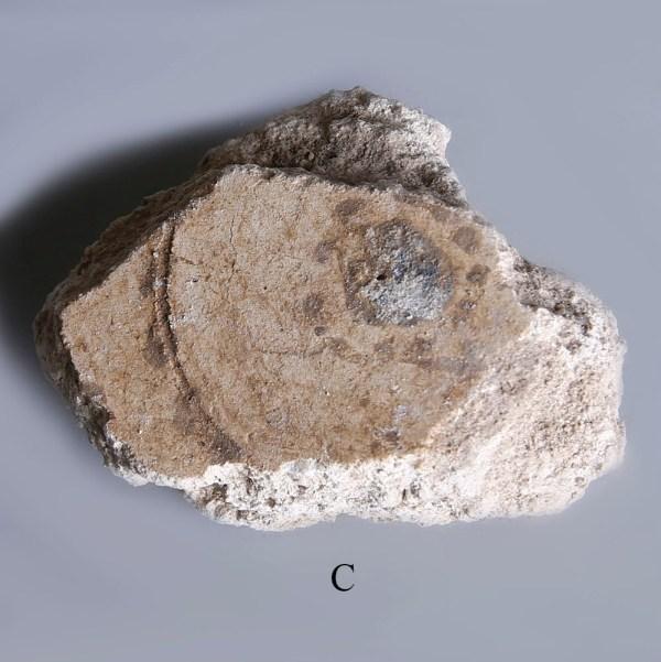 frescoed plaster fragments from pompeii c