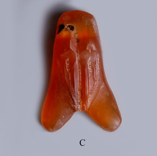 selection of egyptian carnelian fly amulets c
