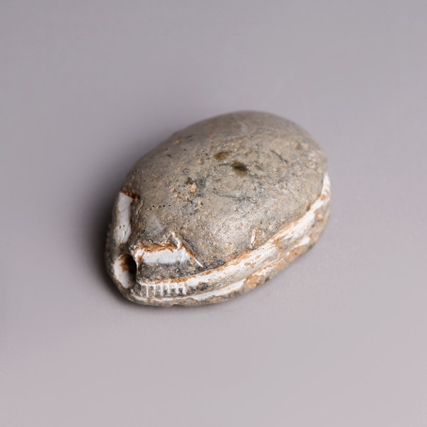 Egyptian Steatite Hyksos Scarab with Horus