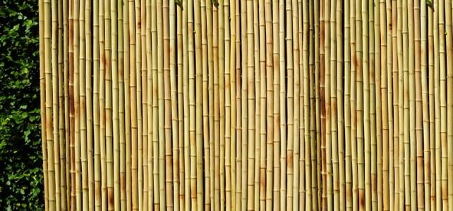 Anti Rayap Untuk Pagar Bambu