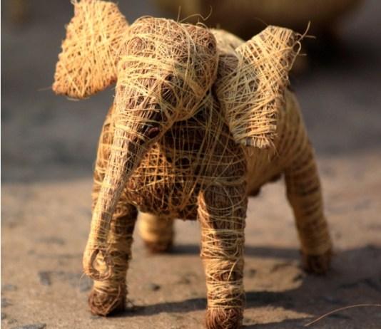 gajah sabut kelapa