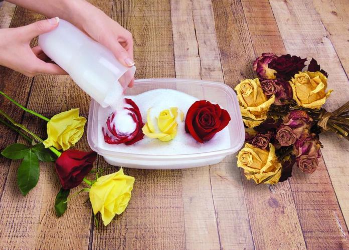 pengawetan bunga (2)