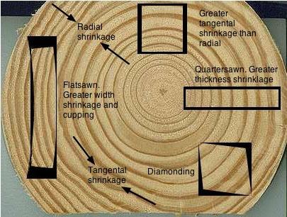 shrinkage  kayu gergajian