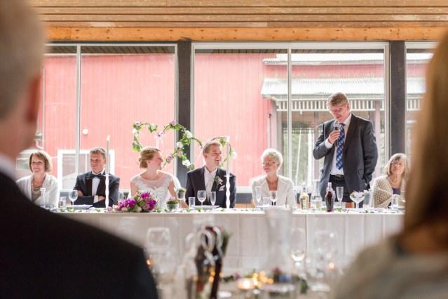 bröllop_linnea_alexander-210