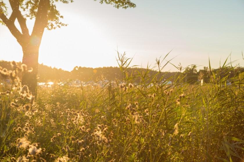 stockholm_danderyd_kevinge-5