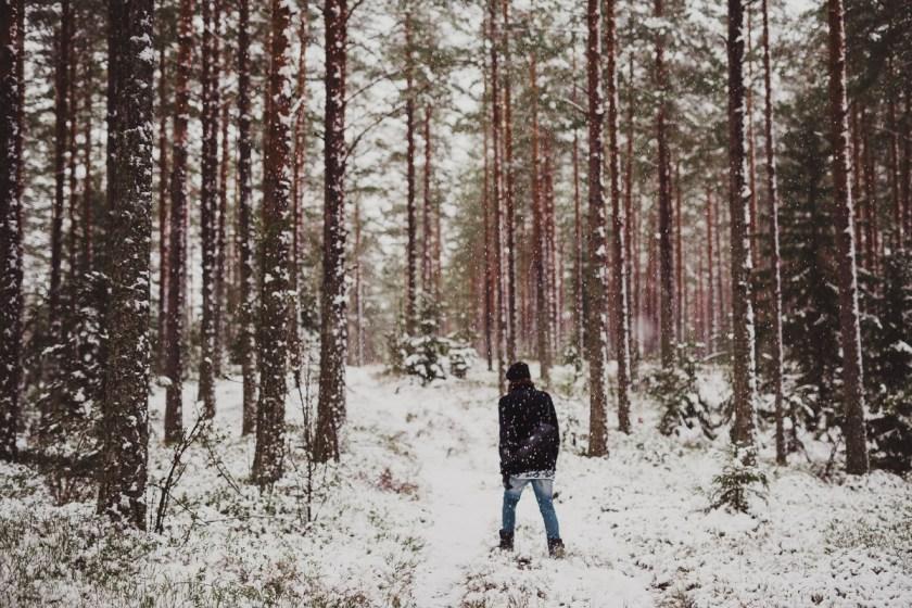 vinter_gullringen-10