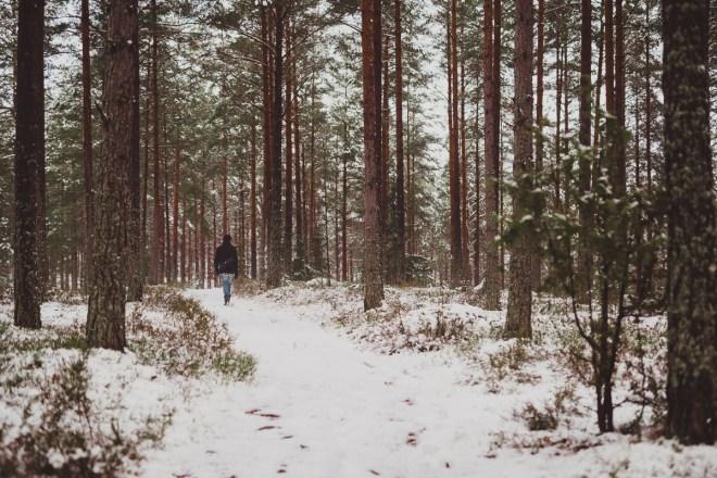 vinter_gullringen-6
