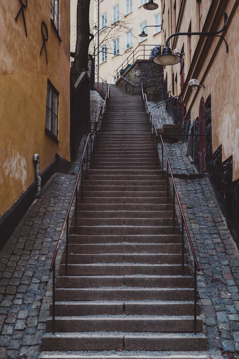 stockholm_antligenvilse-59