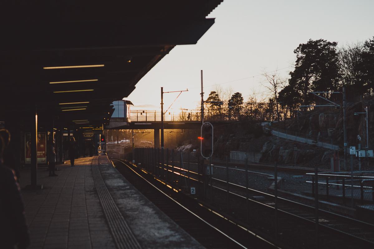 stockholm_antligenvilse_slakthusomradet-8