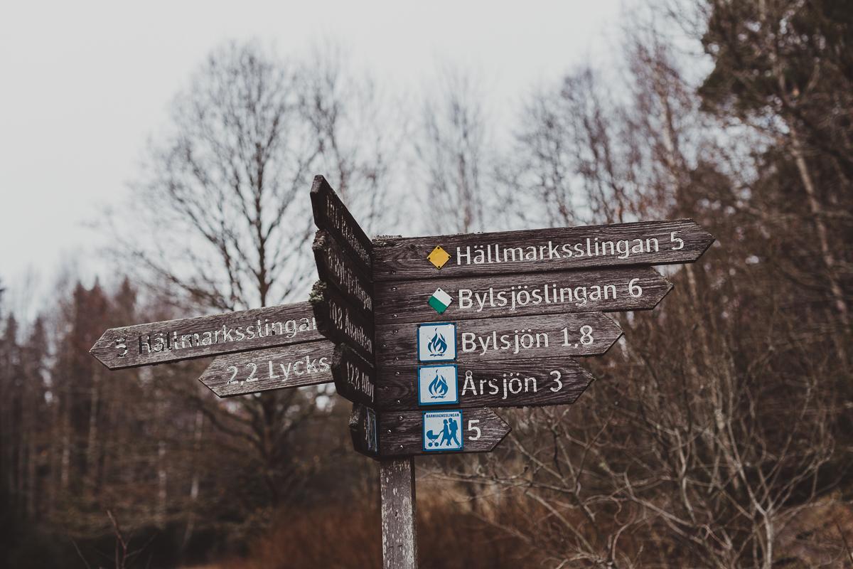 stockholm_antligenvilse_tyresta-4