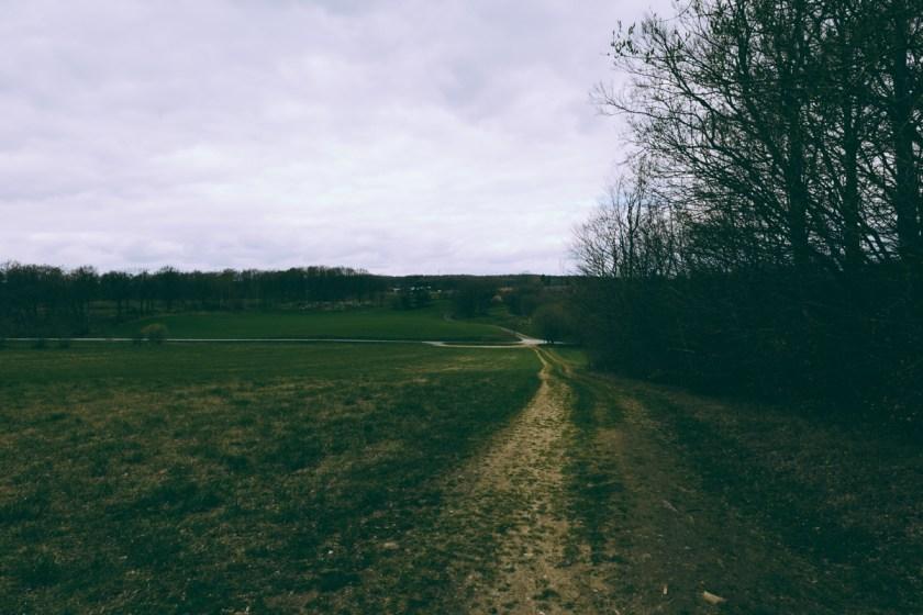 antligenvilse_cocoon-39