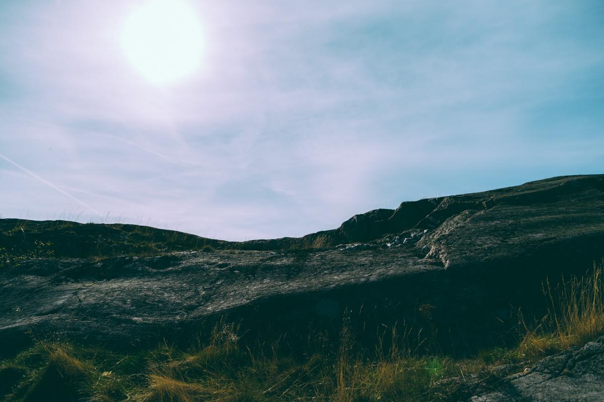 antligenvilse_landsort-39