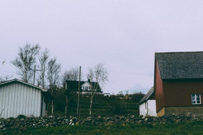 antligenvilse_vejbystrand-136