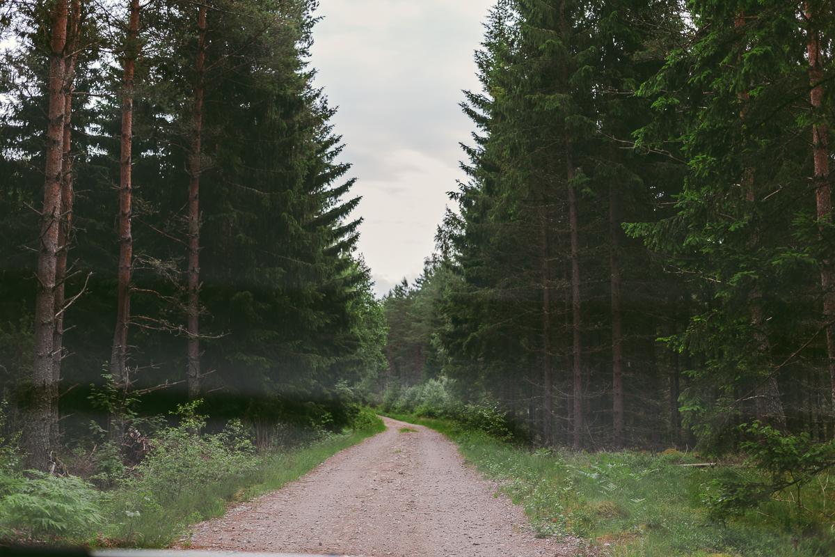 fotodagbok_midsommarafton-13