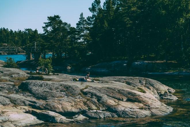 stendorren_naturreservat-10