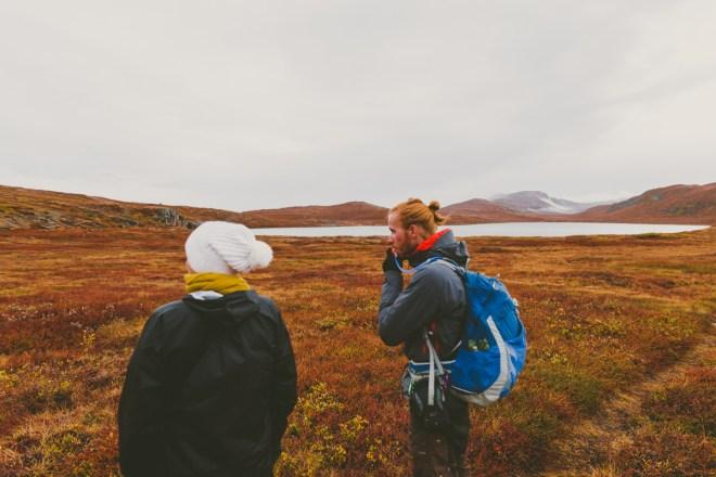 arktisk_oken_gronland-16