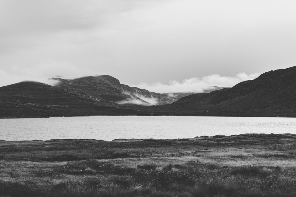 arktisk_oken_gronland-18