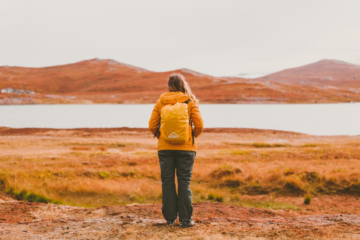 arktisk_oken_gronland-21