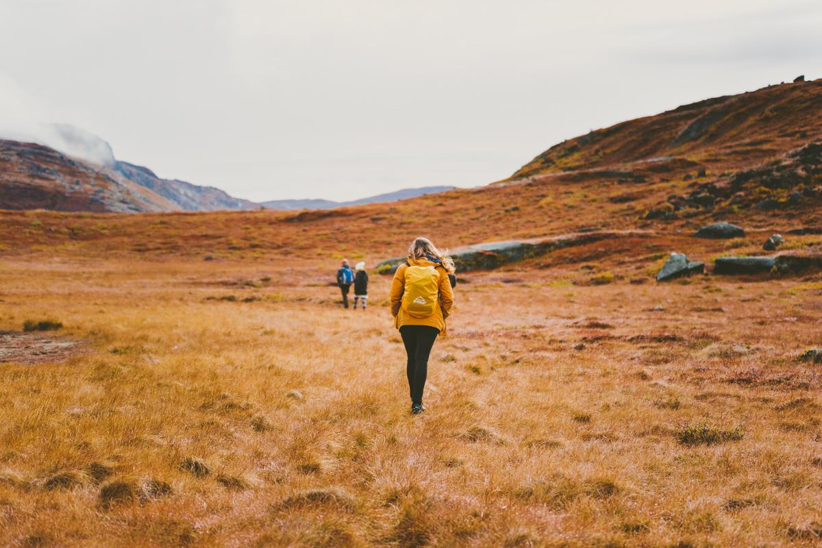 arktisk_oken_gronland-36