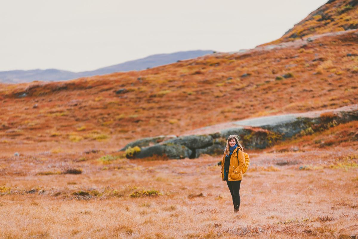 arktisk_oken_gronland-39