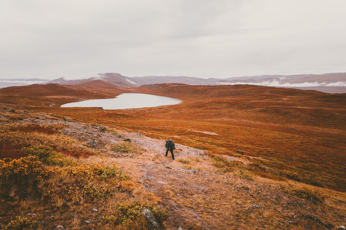 arktisk_oken_gronland-8