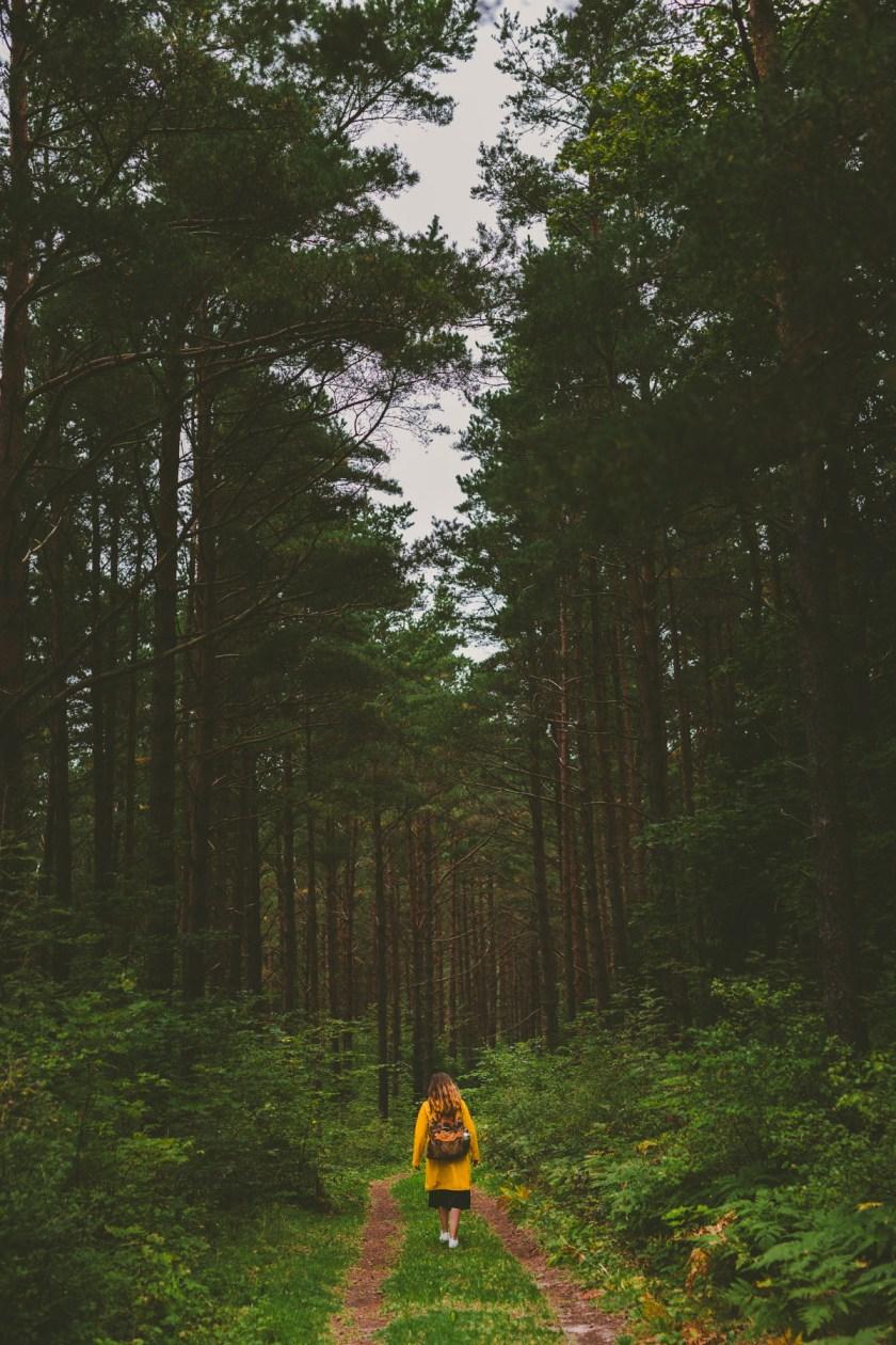 lettland_roadtrip-56