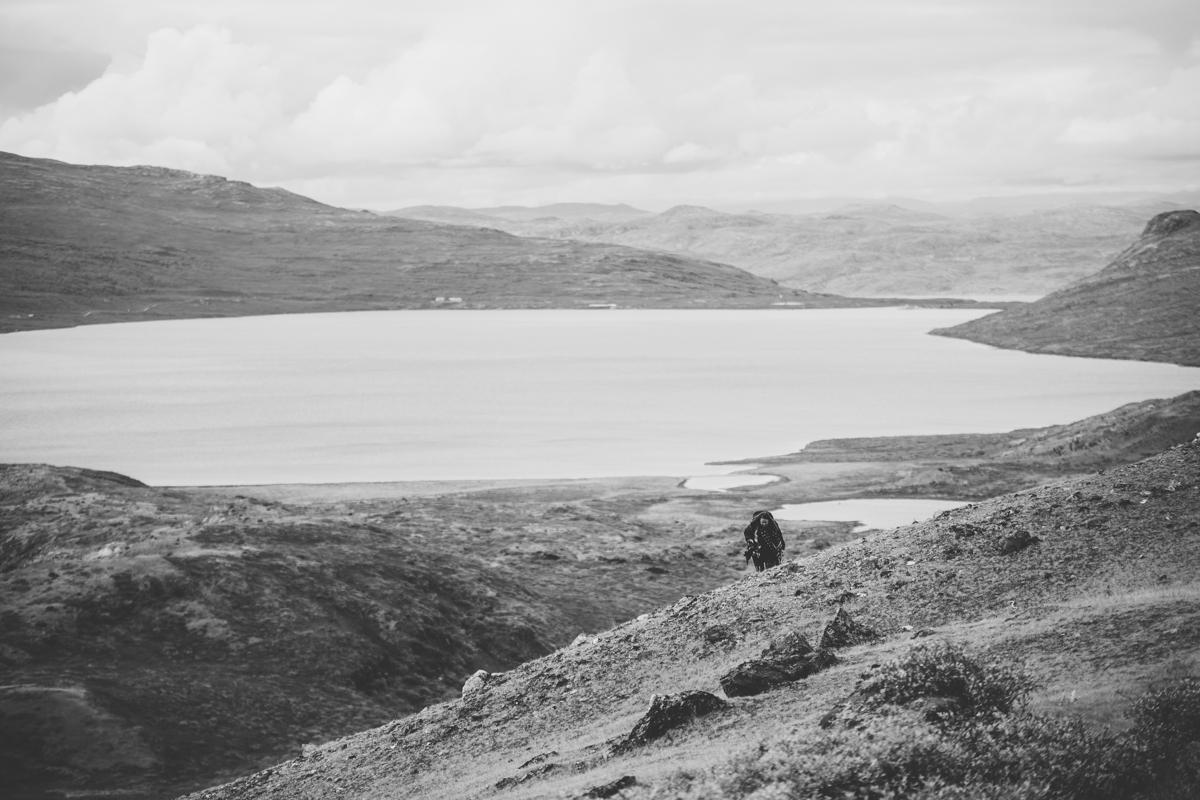 arktisk_oken_gronland-70