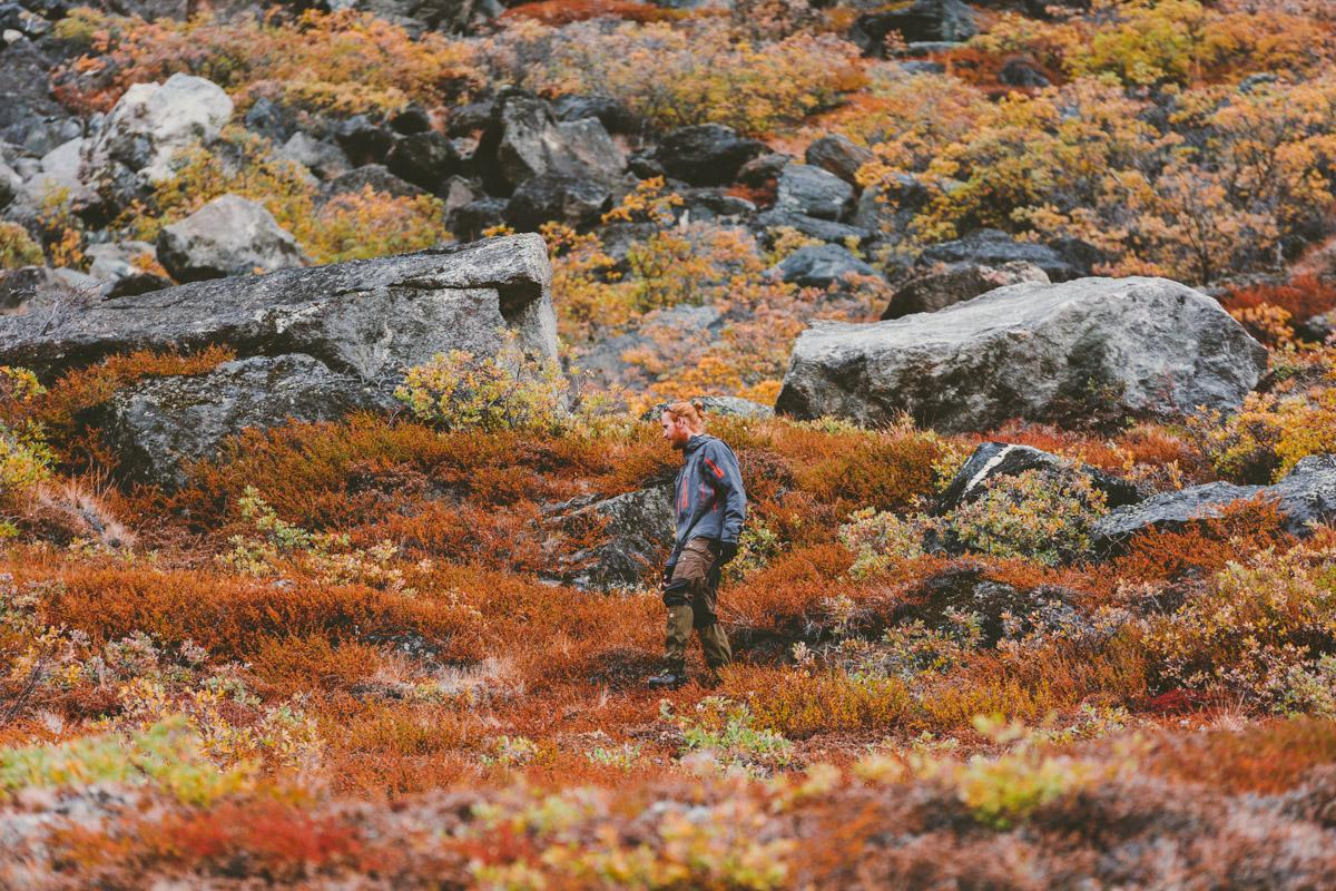 arktisk_oken_gronland-73