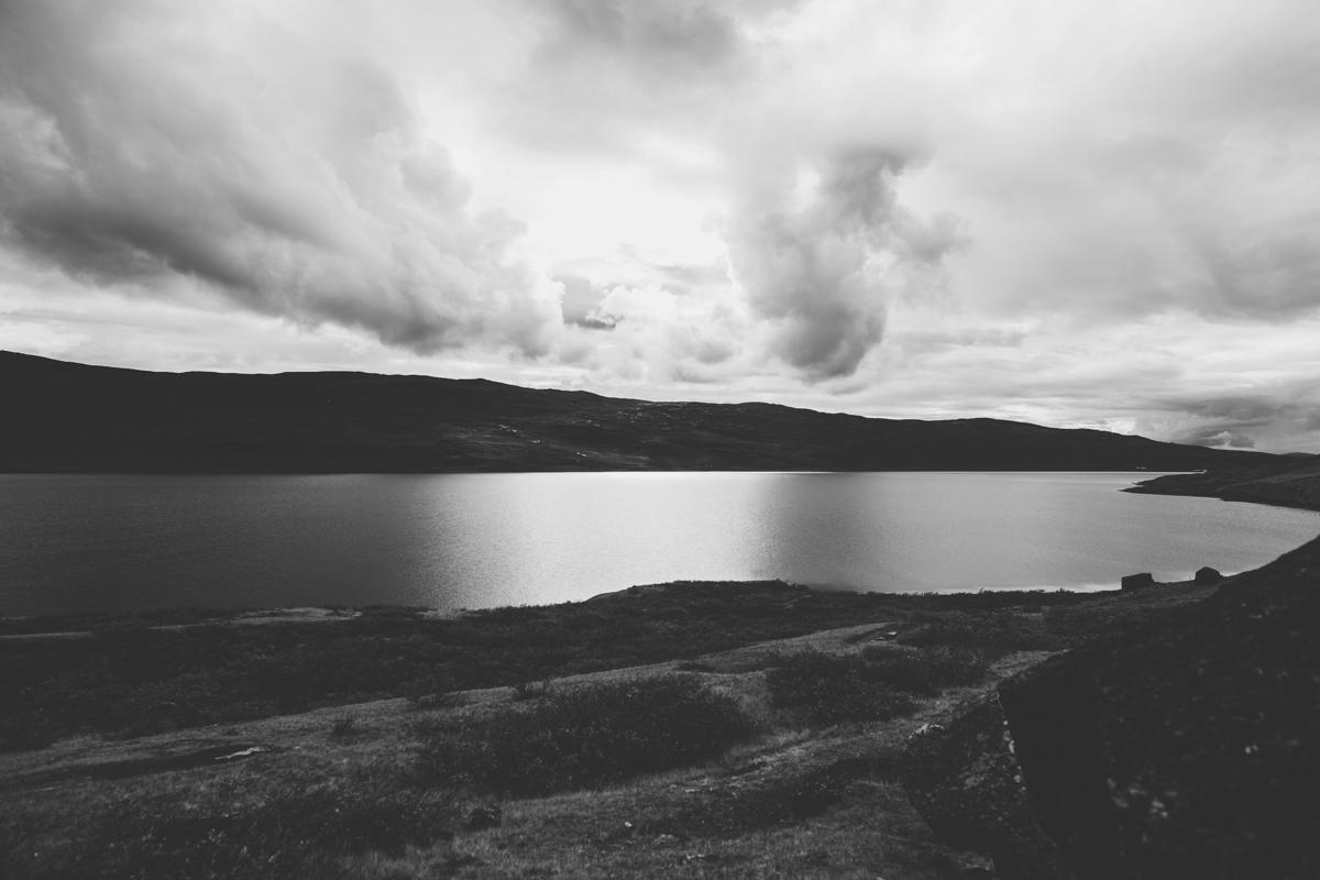 arktisk_oken_gronland-90