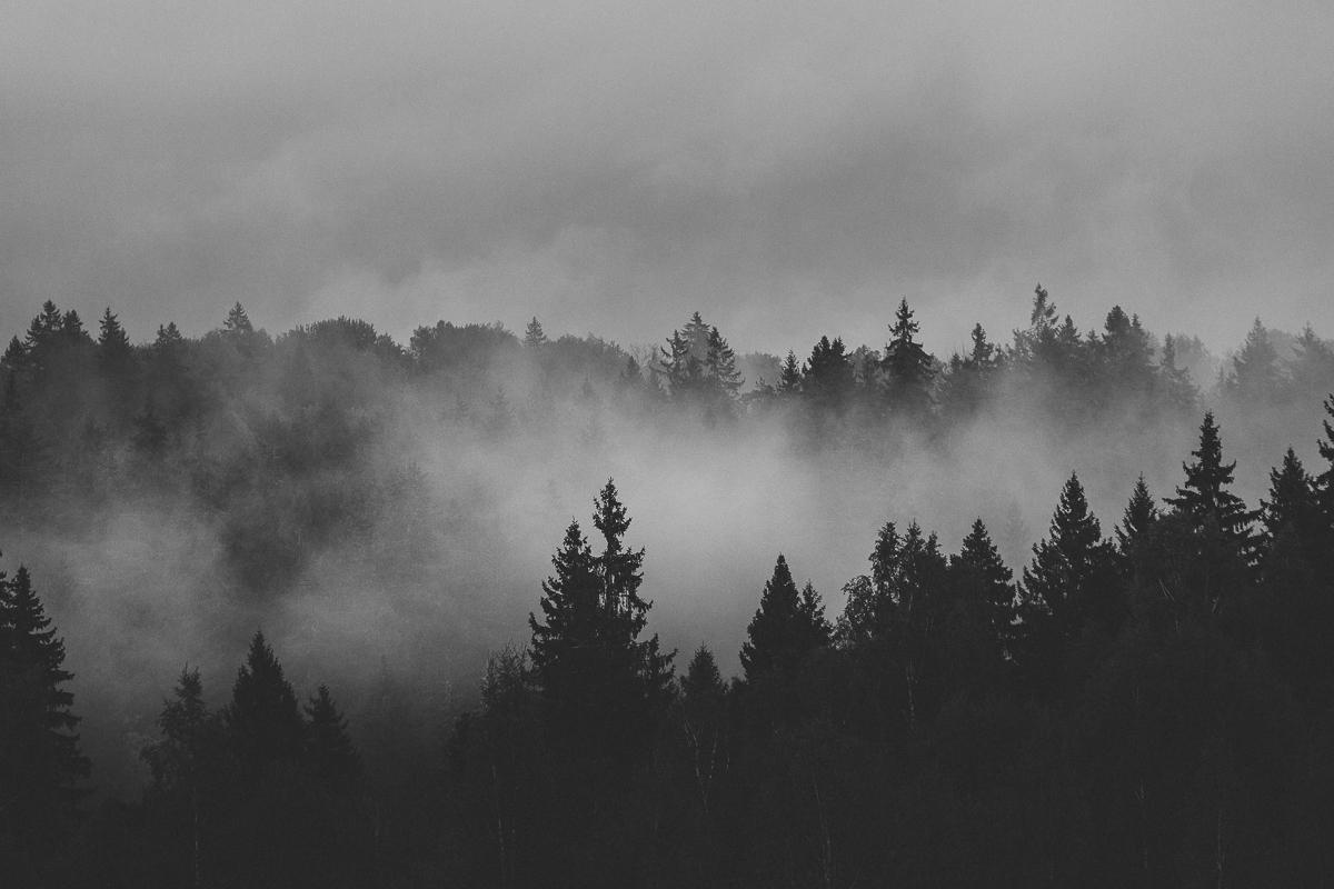 att göra i lettland - gauja nationalpark