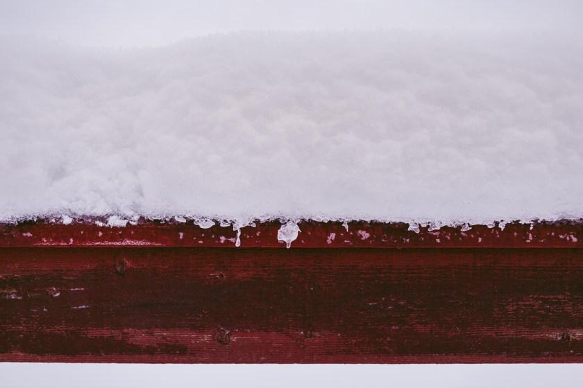 Dagboksnotering från ett vintrigt Västerbotten