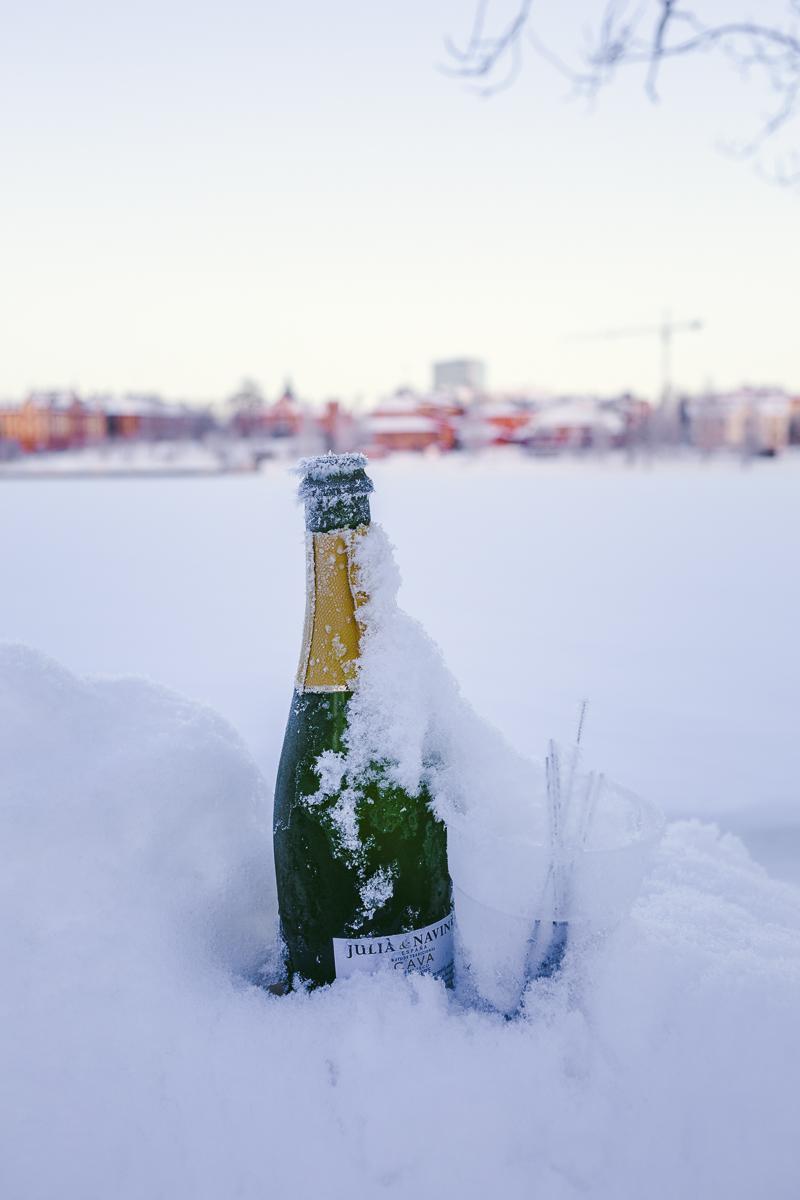 hur fira nyår ensam