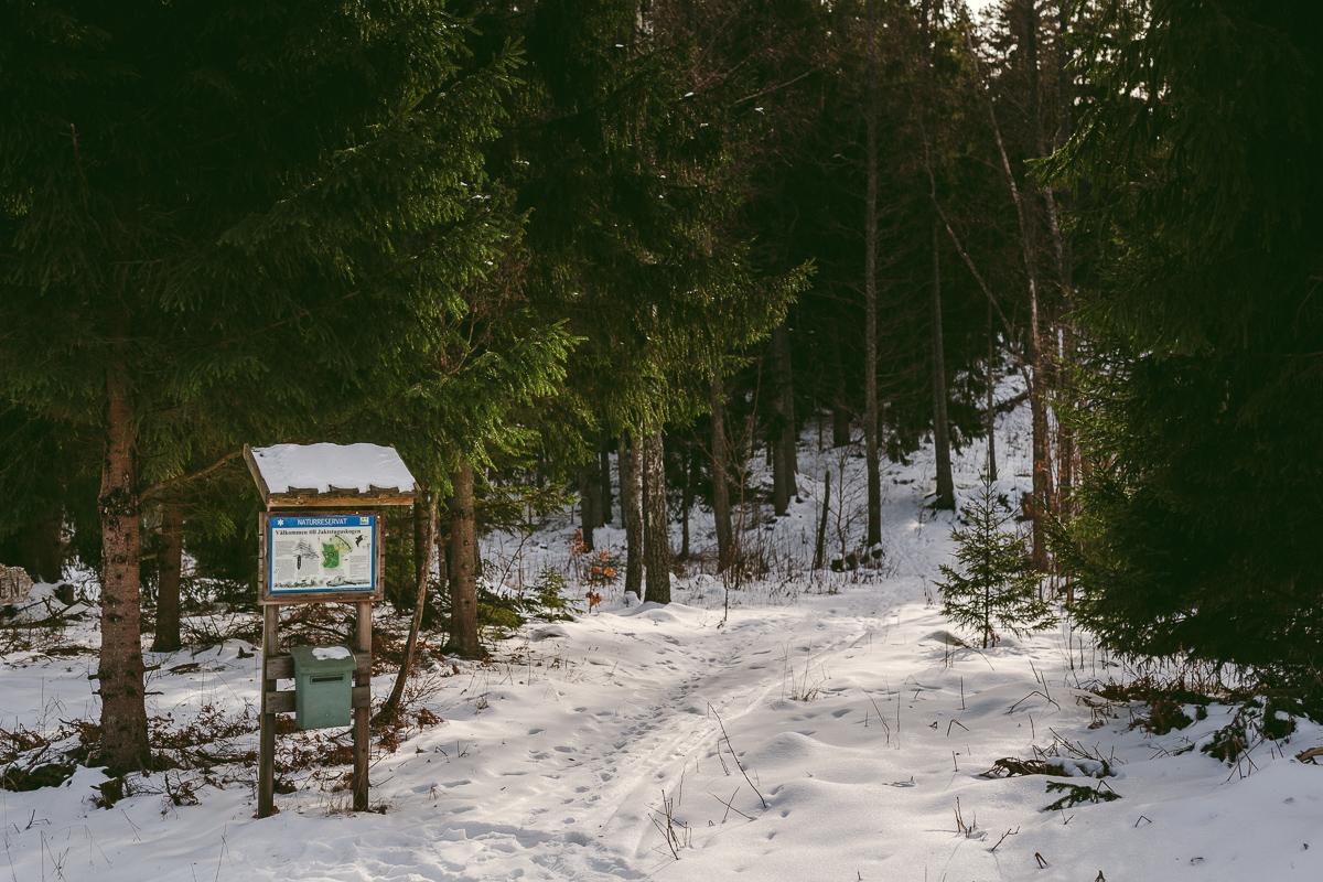 jaktstuguskogen