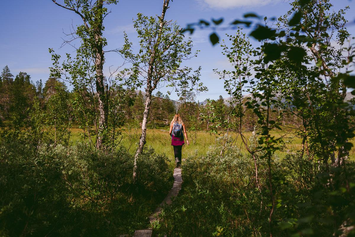 linda-marie gäfvert vandra