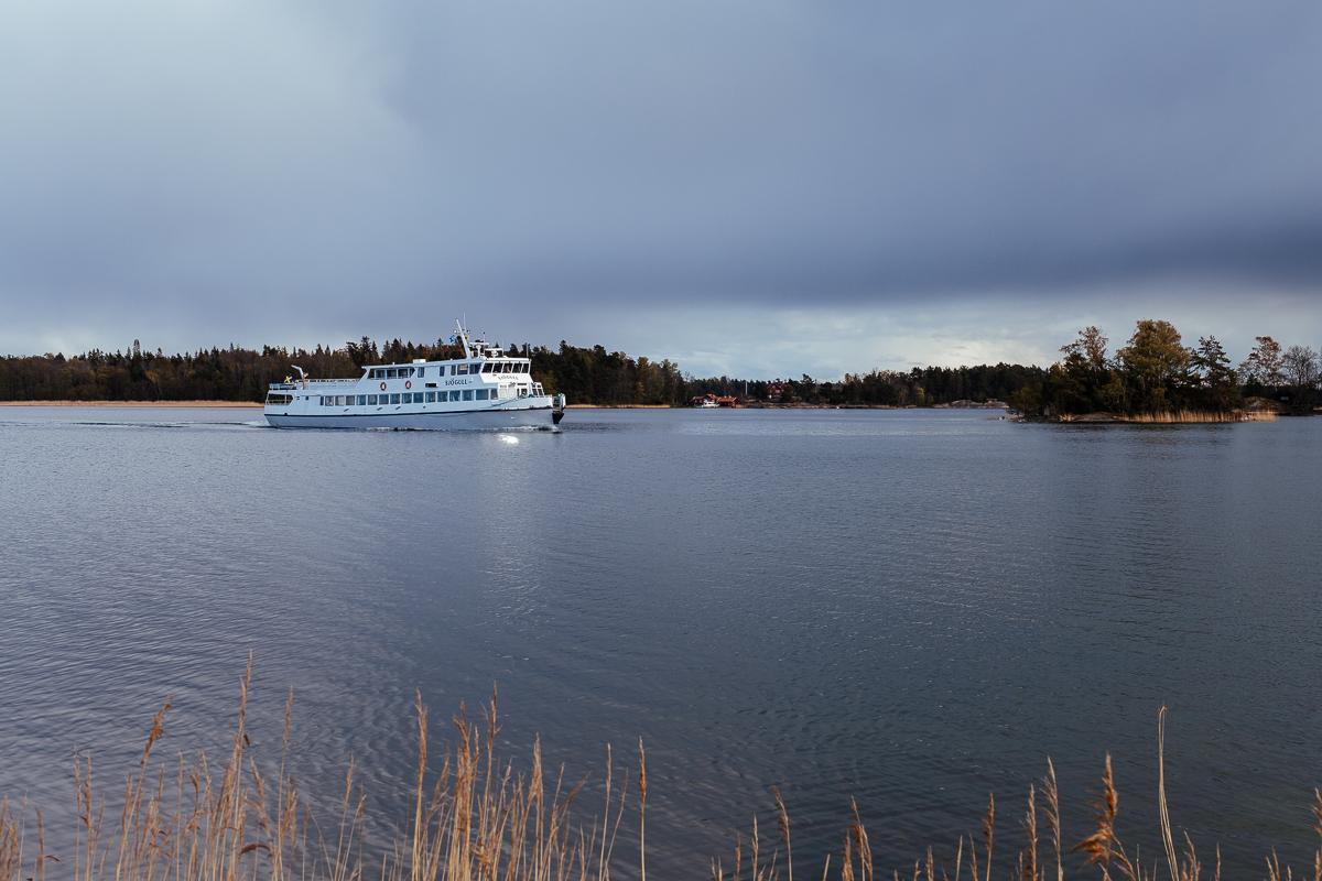Sjögull Ängsö nationalpark