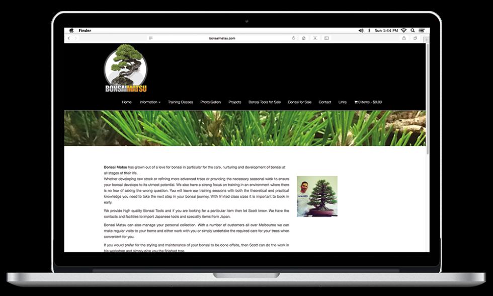 bonsai matsu website