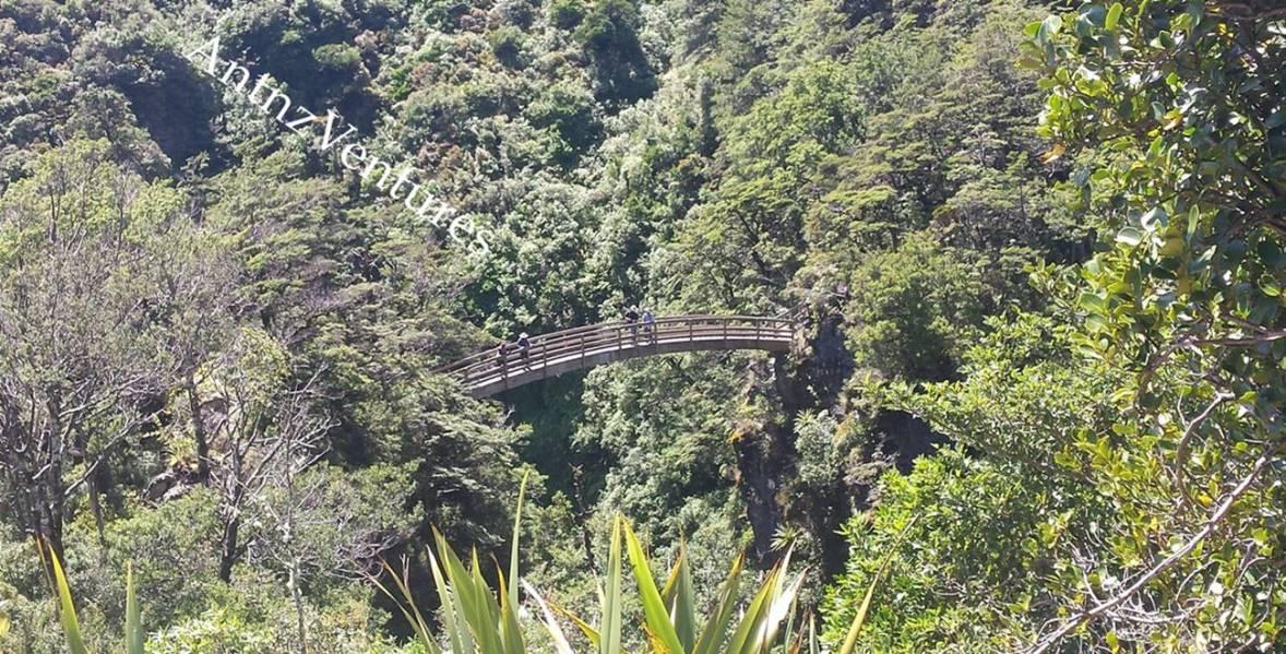 The Iconic Rangiwahia Bridge
