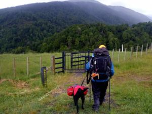 A shot from behind of ADNZ Ben (left) and Antnz both with full backpacks on in the foreground.  In the mid-ground and foreground is a grassed area, fence and gate, in the background are hills of native bush.