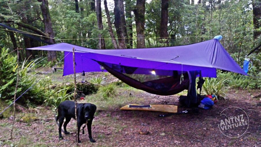 Hammock Camp with large purple tarp at Donnelley's Flats, Jan 2019. ADNZ Ben on left