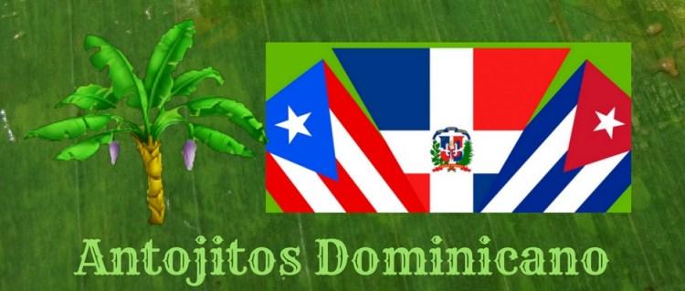 antojitos dominicano en newark new jersey comida tipica dominicana