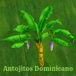 antojitos dominicanos en newark new jersey