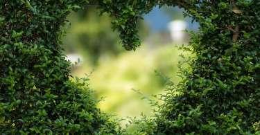 Al risveglio, ecco l'amore che bussa alle porte del cuore