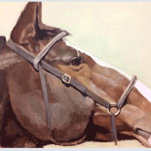 cabeza de caballo óleo