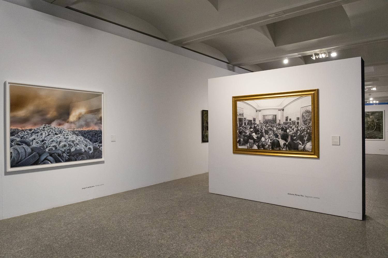 Premios de Fotografia Fundacion Enaire, PhotoEspaña 2019, Real Jardín Botánico, Madrid