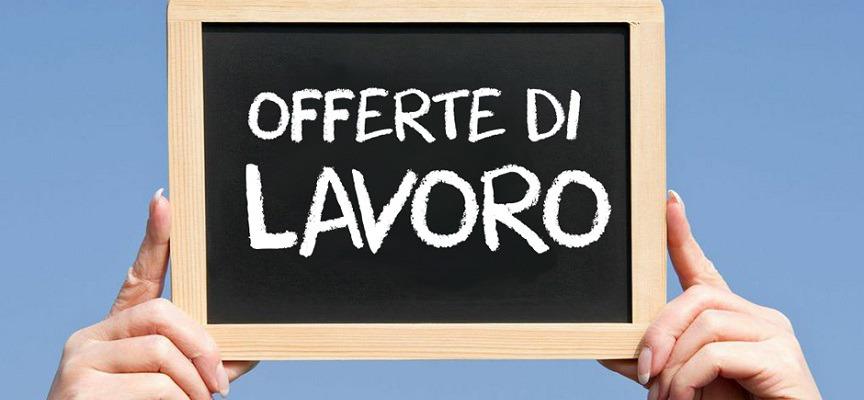 Offerte di lavoro – 31 maggio 2016 (Kelyon, RAI, Ogilvy, Portale Sardegna)