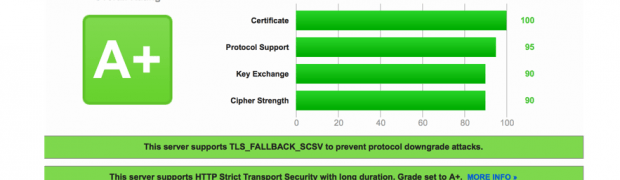 Make your NetScaler SSL VIPs more secure (Updated)