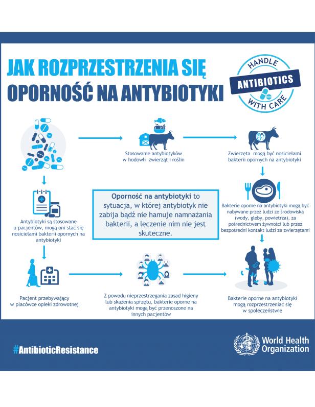 materiały WHO na temat antybiotykooporności